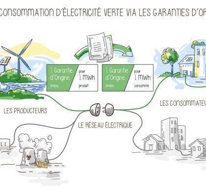 Qu'est ce que l'électricité verte ?