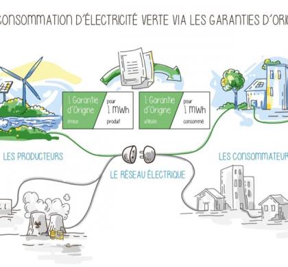 L'émergence des fournisseurs d'électricité verte.